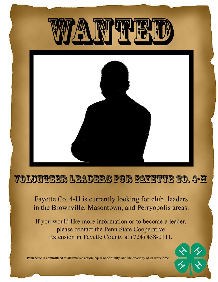 The Fayette County 4H Needs Volunteer Leaders